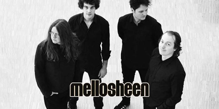 Musikvorstellung: Mellosheen